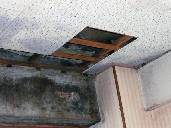 マンション管理組合の共用部分の火災保険の最新情報