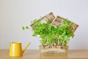確定拠出年金を活かす運用方法と商品、失敗を減らすコツ