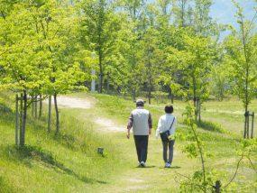 相続税の配偶者控除(配偶者の税額軽減)、1億6000万円の計算と申告