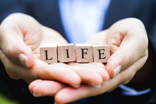 更新型保険(生命保険・医療保険)と全期型保険・終身型との違いとは?